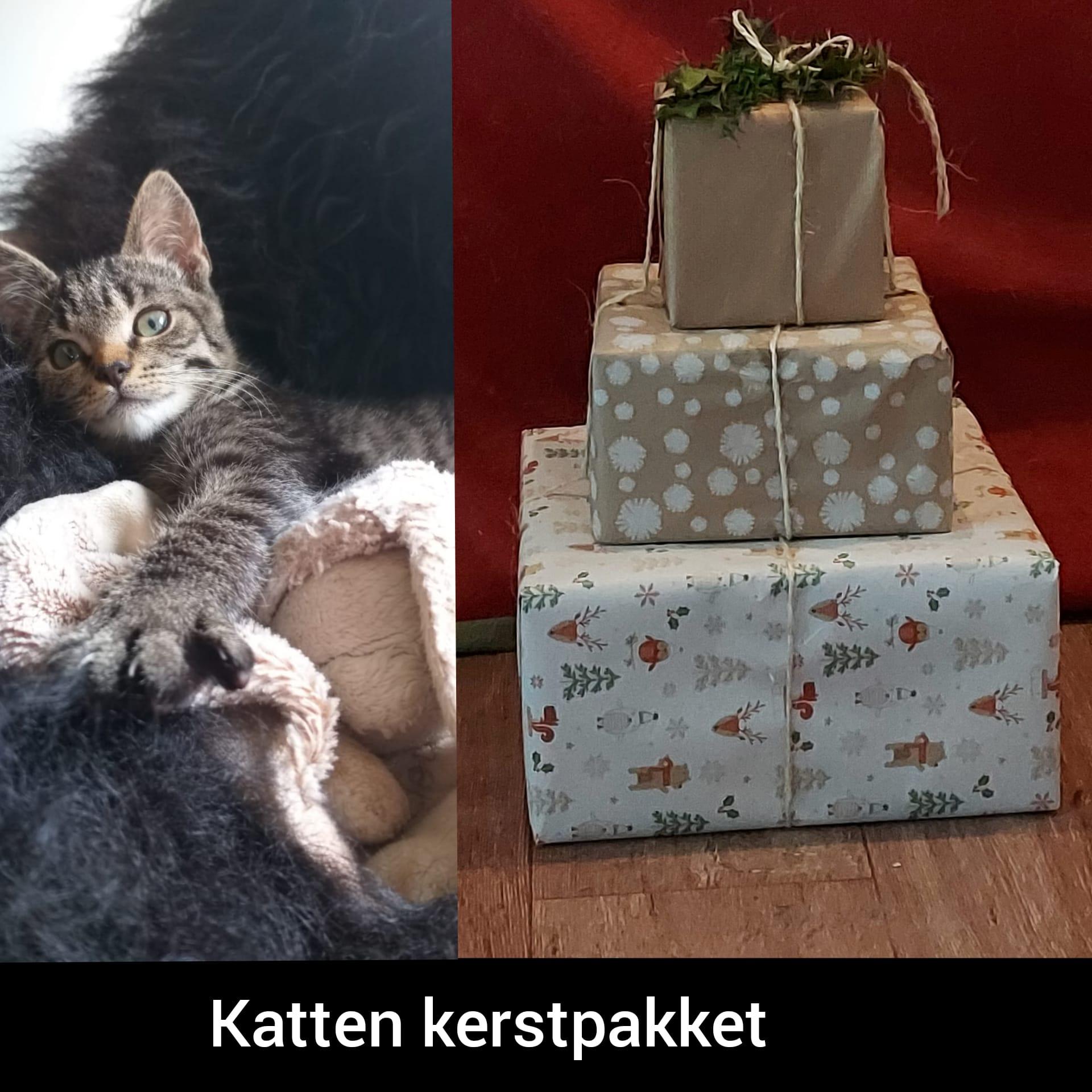 kerstpakket voor de kat